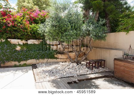 Beauatiful Classical Mediterranean Garden