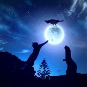 stock photo of goodnight  - Silhouettes of animals in night sky with full moon - JPG
