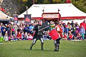 Medieval Sword Fight