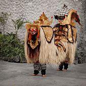 Постер, плакат: Традиционный костюм для театра Barong Индонезия Бали