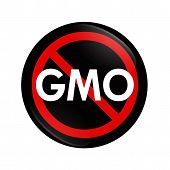 image of modifier  - A black and red button with word GMO and not symbol isolated on white Stop using GMO food - JPG