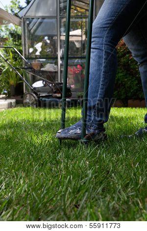 Aerating Lawn