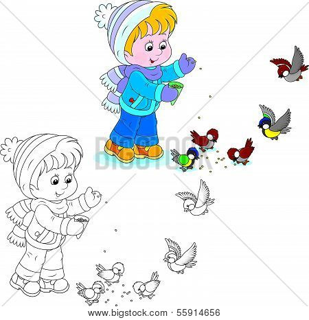Child feeds birds