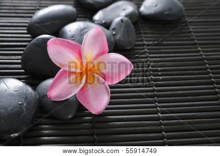 Pink frangipani with spa stones on bamboo mat