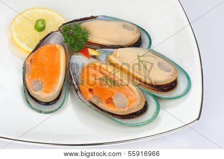 Fresh mussels with shell