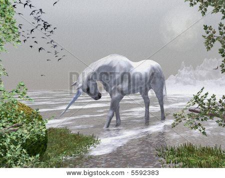 Unicorn Moon Rise Illustration