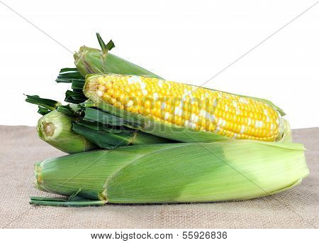 Fresh Sweet Corns On Table
