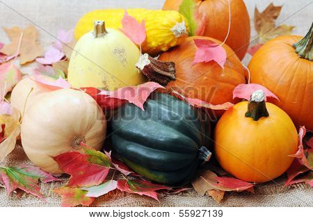 Thanksgiving (harvest) Decoration