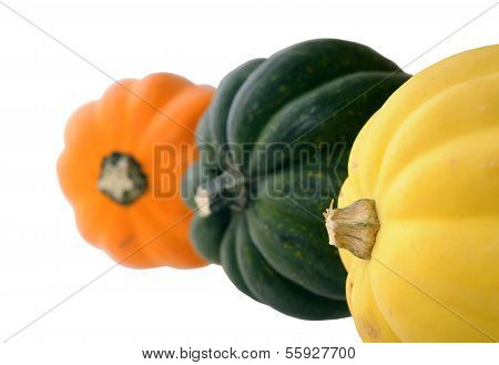 Variety Of Acorn Squash Isolated On White