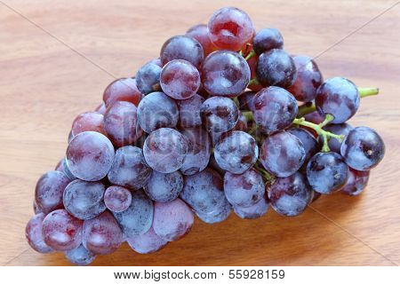 Fresh Grapes to make red wine from Sudtirol (South Tyrol, Italy)