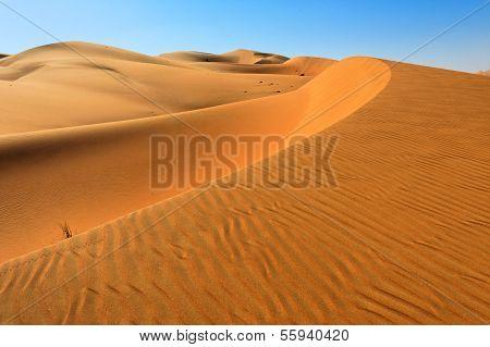 Sand Dunes in Rub' Al Khali Desert