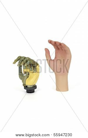 High-tech Hand Prosthesis With Synthetic Skin For Replacing An Amputated Hand.