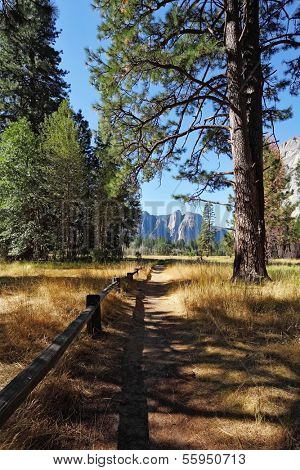Lovely shady path in Yosemite National Park. In the background - the famous granite rock monoliths