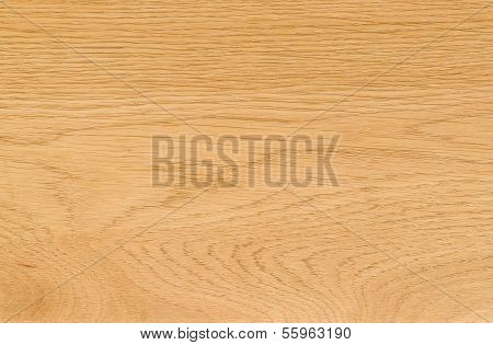 Nature Pattern Detail Of Ash Wood Background