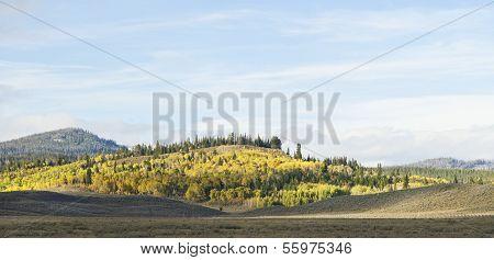 Wyoming Fall