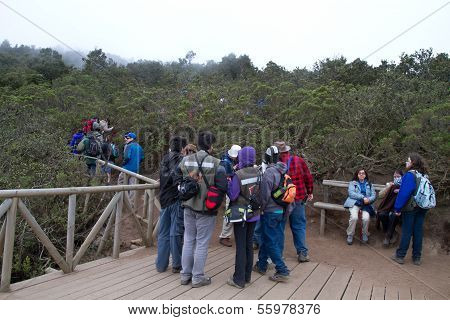Bosque de Fray Jorge national park