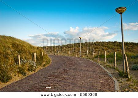 Path In Dunes