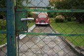 pic of beetle car  - Volkswagen Beetle behind the fence - JPG