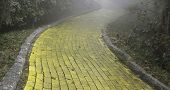 stock photo of oz  - Yellow Brick Road winding through the forest - JPG