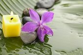 Pink orchid and stones with yellow candle on wet banana leaf
