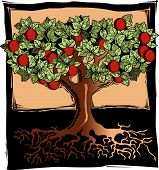 picture of apple tree  - Woodblock woodcut style organic apple tree orchard with red apples and roots - JPG