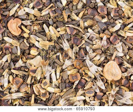 Wildflower Seeds Background