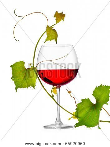 Wine. Glass of wine isolated on white background. One Glass of red wine and grape leaves. Rose wine. Vine leaf.