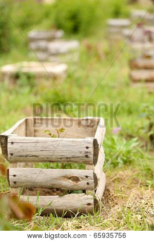 Old wooden crate, outdoors