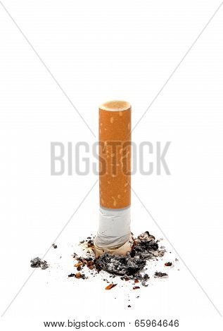 Cigarette Butt Unhealthy Life Style