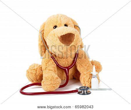 Doctor Teddy's Checkup