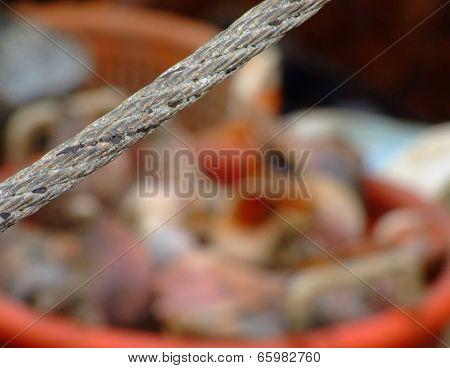 Fishing rope