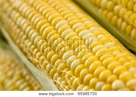 Yellow maize macro