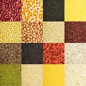 image of roughage  - collection of 16 different kinds of grain as background - JPG
