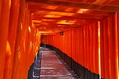 image of inari  - Fushimi Inari Taisha Shrine in Kyoto city - JPG