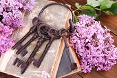 stock photo of skeleton key  - Beautiful composition with old keys and old books on wooden background - JPG
