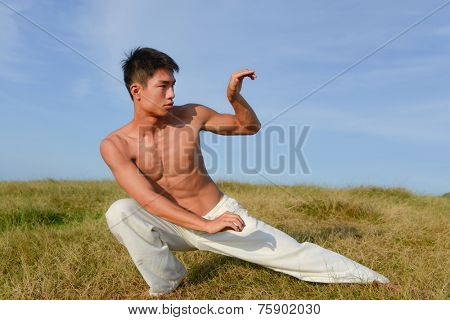 very fit male model with muscles in chinese do kung fu - taichi outdoor