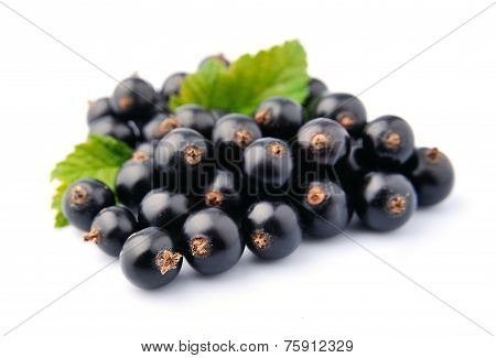 Sweet Black Currant With Leaves Close Up On White.