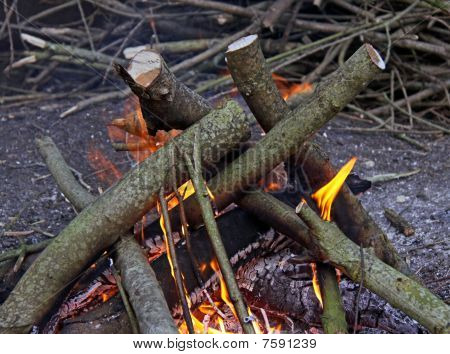 A log camp fire