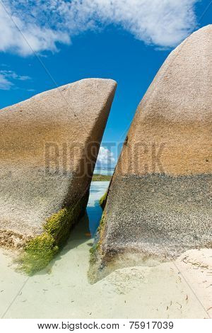 Algae on Historic Huge Rocks, with Blue and White Sky Background, at Anse Source d'Argent Lagoon. Located in La Digue Island, Seychelles.