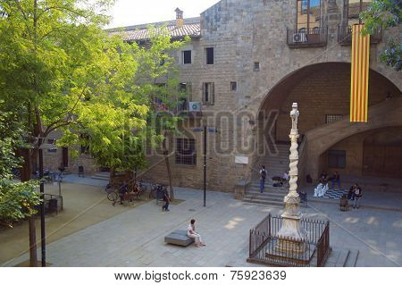 The Barcelona library garden, Jardins de Rubio i Lluch