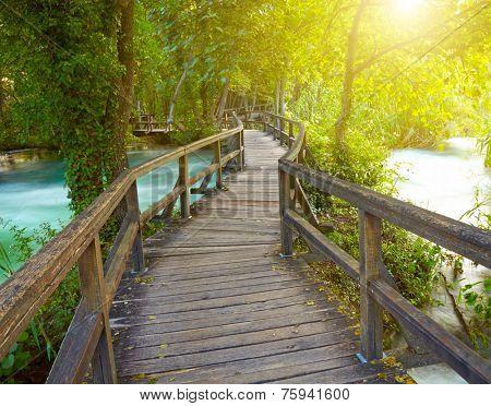 Boardwalk in the park