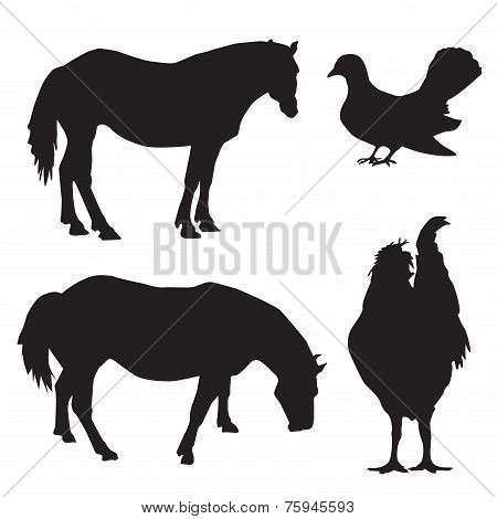 Silhouettes Of Animals And Birds Vector