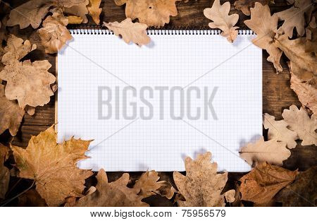 wooden background with leaves and notebook