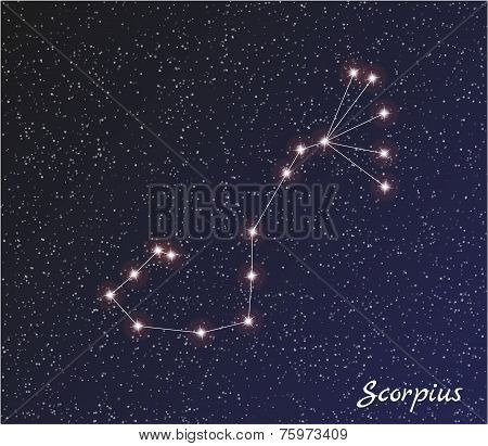 Constellation Scorpius
