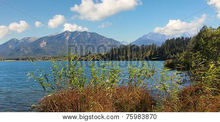 Pictorial Alpine Lake Barmsee, Lake Shore With Reed