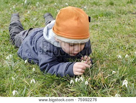 Child And Snowdrops