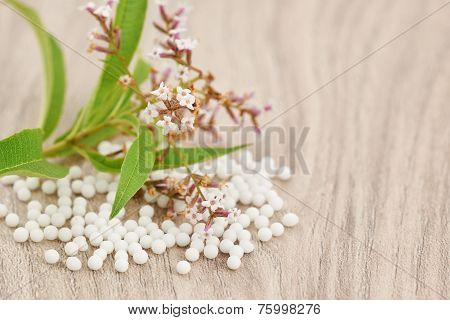 Homeopathic GrGranules Scattered On A Wooden Table