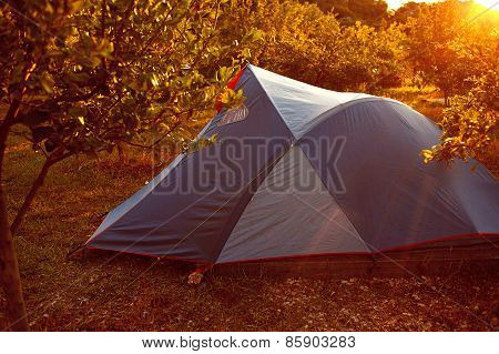 tents in the garden