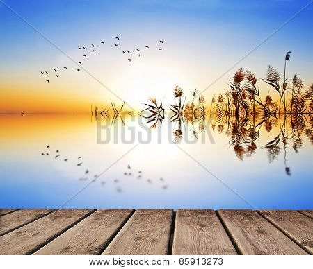 reflections in the lake water