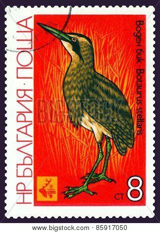 Vintage  Postage Stamp.  Bird Bittern.